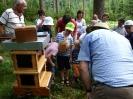 Bienen am Untersberg_13