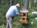 Bienen am Untersberg_6
